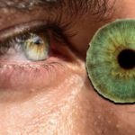 Datos curiosos sobre personas con ojos verdes