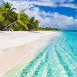 Oferta de trabajo de ensueño: cuidar una isla en las Bahamas recargando pastos - CABROWORLD