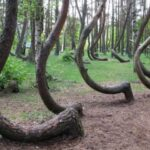 12 lugares geniales que no te atreverías a visitar ... - CABROWORLD